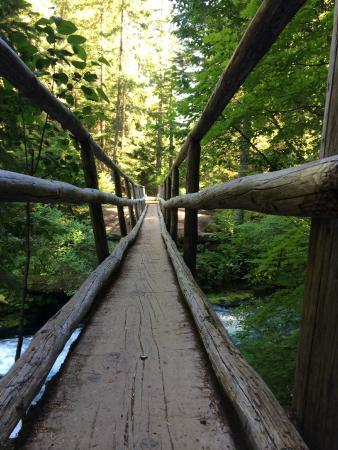 Sisters, OR: Knee-high view of the footbridge.