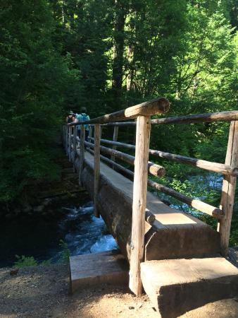 Sisters, OR: Log footbridge to cross over the river