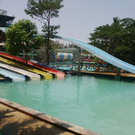 Pool Picture Of Mirasol Water Park Resort Daman Tripadvisor