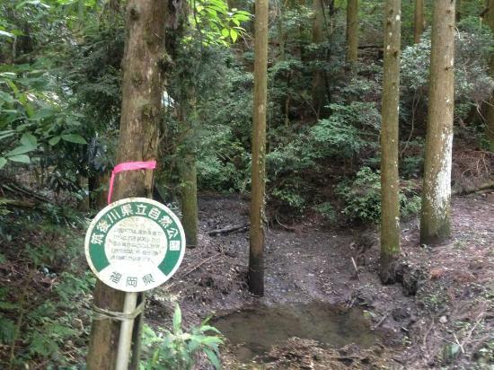 Fukuoka Prefecture, Japan: 県立公園