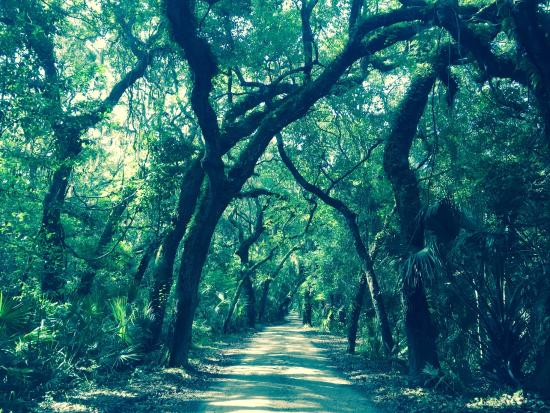 Timucuan Ecological & Historical Preserve