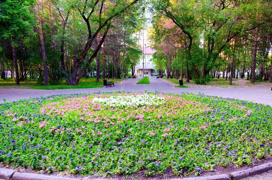 Aleksandr Moiseenko's Park