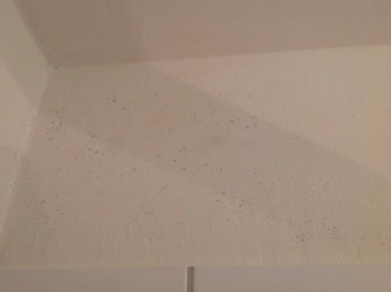 Hotel Blaues Haus: Nicht wirklich gesund. Beide Bilder aus dem Badezimmer.