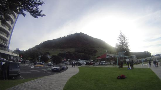 Bell Lodge Motel & Backpackers Hostel: Mount Maunganui