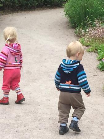 Vogelpark Marlow: photo1.jpg
