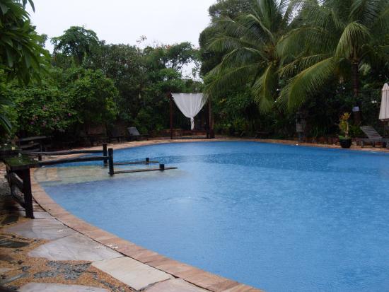 Eads Natural Pool And Backyard Resort : Nieuw! Zoek en boek je ideale hotel op TripAdvisor voor de laagste