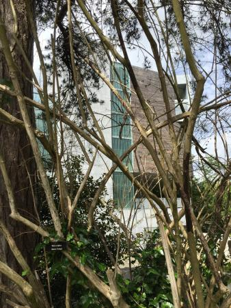 Lewis Glucksman Gallery: The gallery building is clearly excellent architecturally but hard to navigate- art displays our