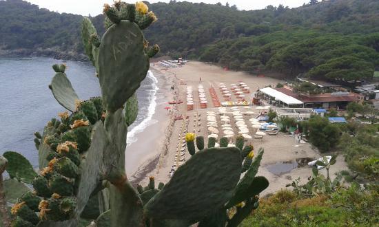 Hotel lo Scirocco : Spiaggia