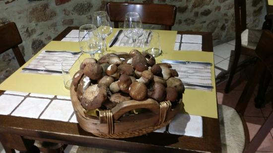 Osteria Grassini