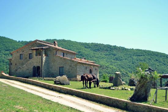 Agriturismo Antico Podere Il Prato