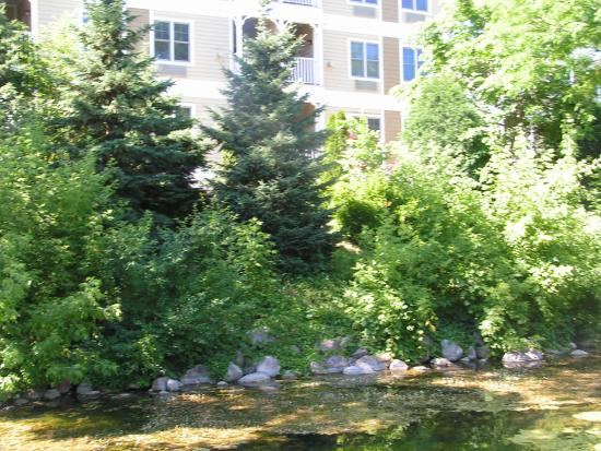 Mill Creek Hotel: Tucked in a nature preserve in the heart of downtown Lake Geneva