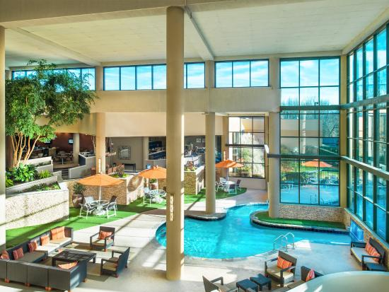 Sheraton charlotte airport hotel updated 2017 prices - Indoor swimming pools charlotte nc ...