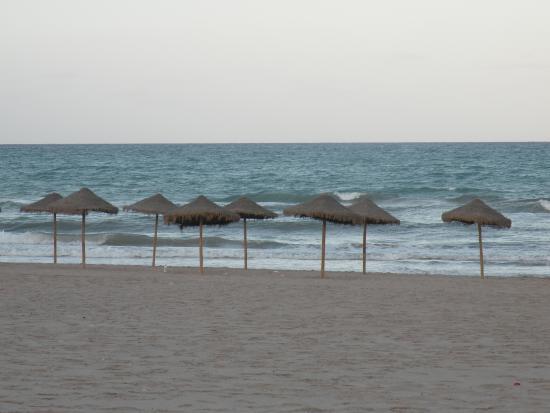 Playa Muchavista: Sombrillas