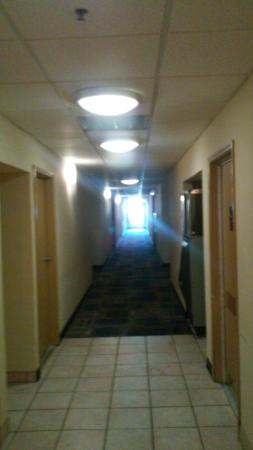 Red Roof Inn Macon: The hallway