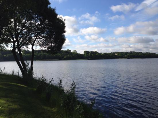 Best Western Golf Hotel Viborg & Golf Salonen Photo