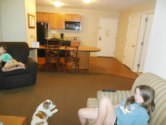 Candlewood Suites Winchester: Living Room - Sofa pulls out to full bed