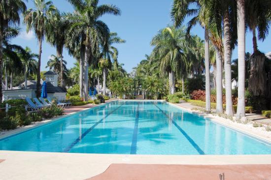 هاف مون: Our Pools