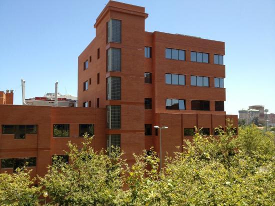 Albergue Juvenil y Colegio Mayor Galileo Galilei : Vista dalla camera