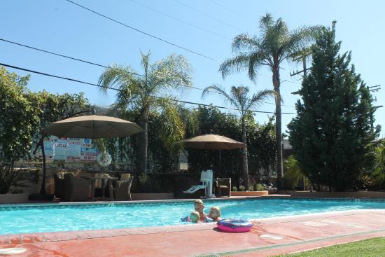 Hollywood Hotel: Pool