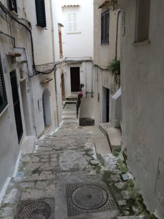 Florenza Residence: photo4.jpg