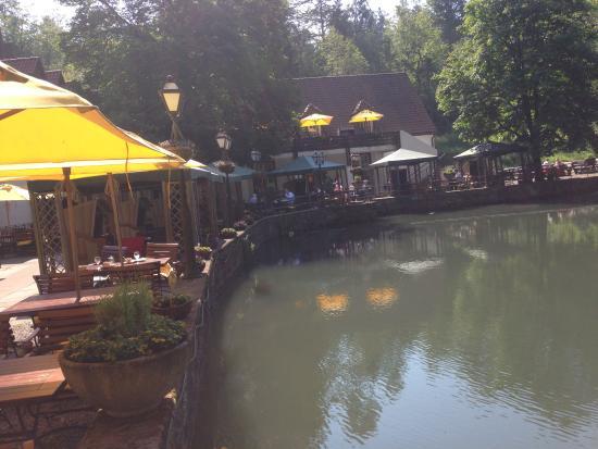 Waldhotel Silbermuehle: Teich und Hotel