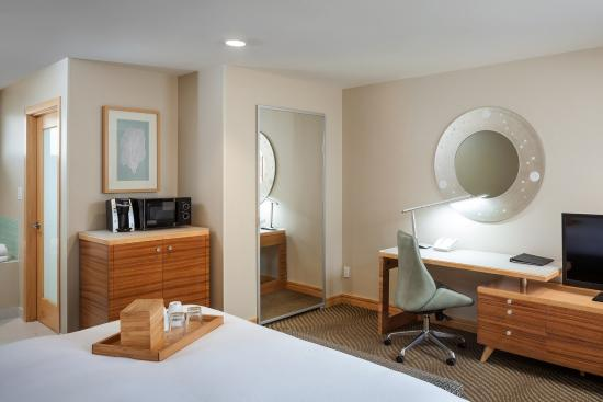 Catalina Canyon Resort & Spa: Guest Room