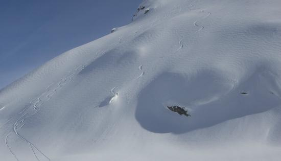 Alaska Powder Descents: I chose the one less traveled...
