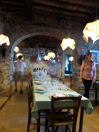 Lucca Tours : Dinner and wine tasting after tour.