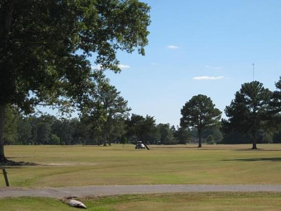 The Briarwood Inn Hotel: Golf course