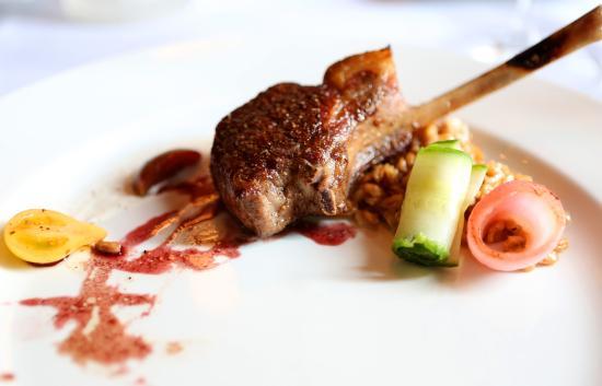 1515 Restaurant: Lamb Chop