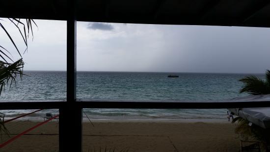 Alfred's Ocean Palace: ocean view