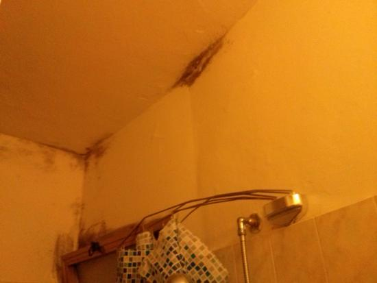 Hotel Graziana: muffa bagno stanza n°6