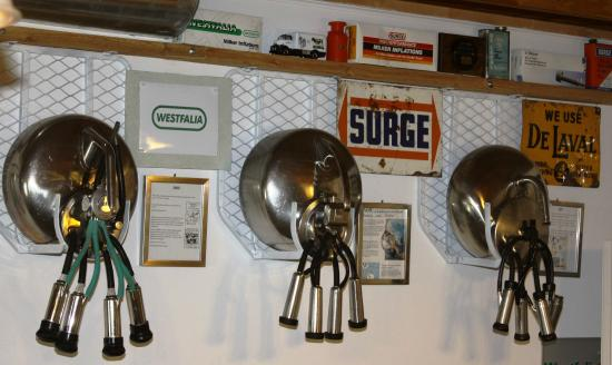 Maysville, MO: Wall of antique bucket milkers at Hamby Dairy Supply