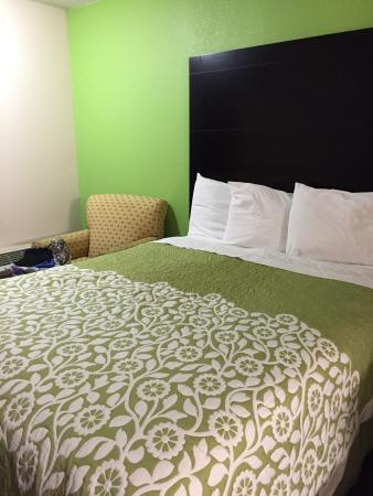 Days Inn Calvert City: Adorable bed linens and updated colors ... Room 110