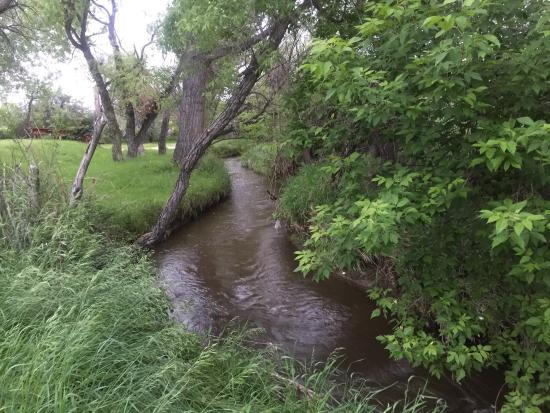 Indian Campground: Stream by tenting area