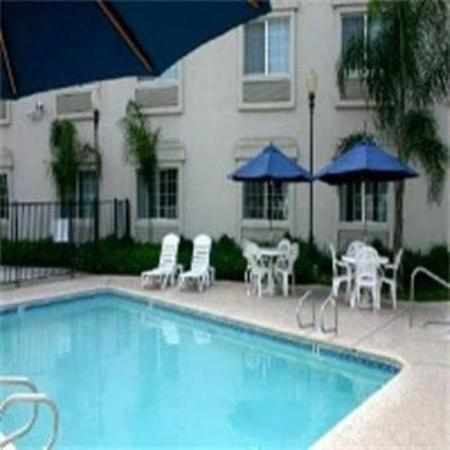 Charter Inn & Suites: Pool view