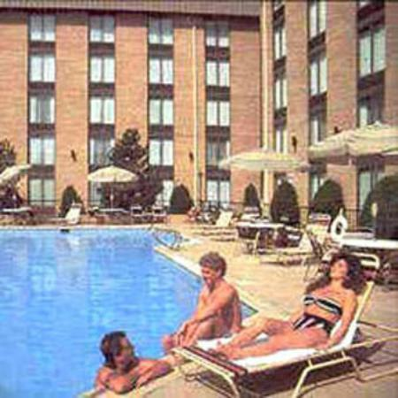 Denver's Best Inn and Suites : Pool View