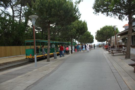 Petit Train Cap Ferret
