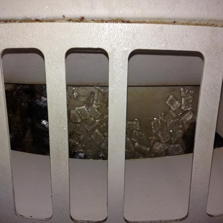 Holiday Inn Hotel & Suites Boston-Peabody: Gross ice machine