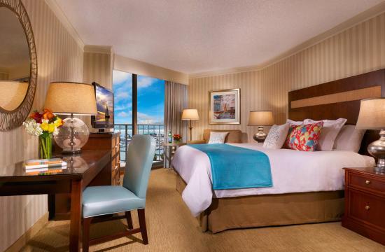Omni Corpus Christi Hotel : King Guest Room
