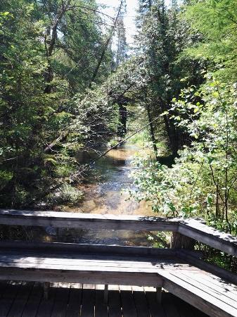 เบลแลร์, มิชิแกน: Grass Lake nature area