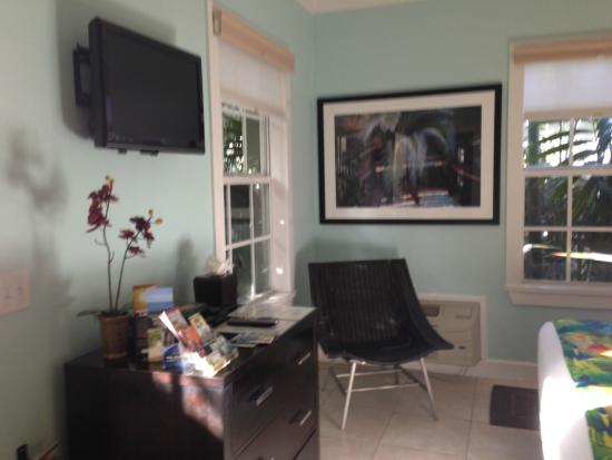 Travelers Palm Inn: Television
