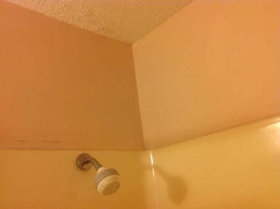 Days Inn Grand Island: Peeling paint and flaking ceiling.