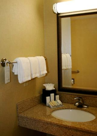 Hilton Garden Inn Augusta: Accessible Sink