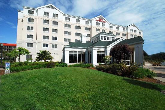 Hilton Garden Inn San Francisco Airport / Burlingame