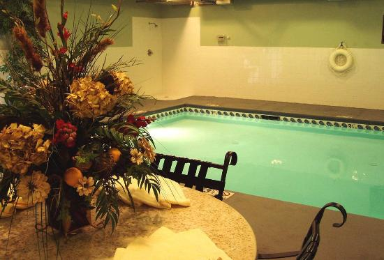 Indoor pool picture of hilton garden inn charlotte - Indoor swimming pools charlotte nc ...
