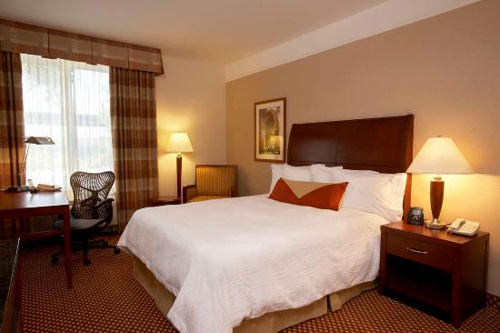 Hilton Garden Inn Springfield: King Bedded Room