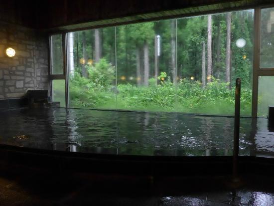 Hamayu Sanso: 浴場からの眺め