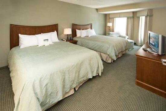 Homewood Suites Atlanta I-85-Lawrenceville-Duluth: Guest Room