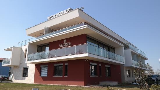 Calendula Ayurvedic&Medical Hotel